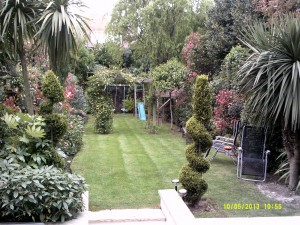 Garden we maintain